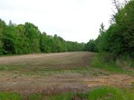 Cr 278 (Lot 2) Blue Springs MS, 38828