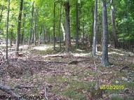 Lot 40 Waterline Drive Upper Tract WV, 26866