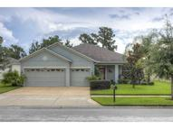 20073 Oakflower Avenue Tampa FL, 33647