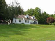 161 Cold Brook Road Bearsville NY, 12409