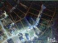 0-Lot 61 Summerset Landing Hampstead NC, 28443