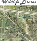 1520 Wildlife Drive Blue Grass IA, 52726