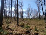 Lot 2 County Rd Lincoln VT, 05443