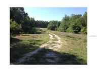 W Cr 44 East Of Fish Camp Road Grand Island FL, 32735