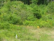 Lot # 17 Spice Run Renick WV, 24966