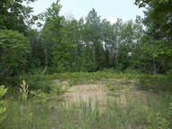 170 W Ostrander Road 9.75 Acres Afton MI, 49705