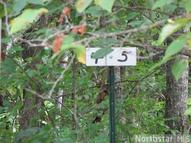 Lot 4 Mccraney Lane Waubun MN, 56589