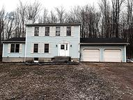 584 Old Gravity Rd. South Canaan PA, 18459