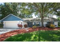 2223 Toniwood Lane Palm Harbor FL, 34685