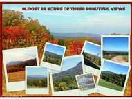 1370 Roberts Mountain Westfield NC, 27053
