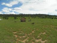 Flanigan Place Reserve NM, 87830