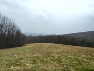 . Manning Ridge Rd. Campbell NY, 14821
