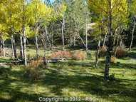 11042 County 1 Road Florissant CO, 80816