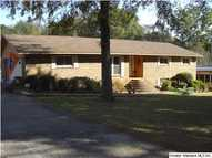81 Meadow Cir Childersburg AL, 35044