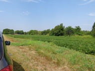 9.74 Acres County Road 107 New Albany MS, 38652