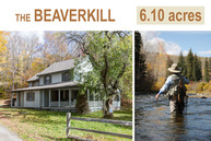 2215 Beaverkill Road Livingston Manor NY, 12758