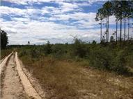 30 Acres Joe Dugger Road Freeport FL, 32439