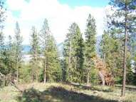 Lot J Nygaard Rd Kettle Falls WA, 99141
