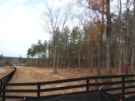 Lot 65 Fox Hollow Trenton SC, 29847