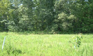 Lot 47 Shepperd Subdivision Nancy KY, 42544