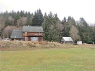 2305 Logging Rd Randle WA, 98377