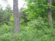 5 Acres Cr-403 Newberry MI, 49868