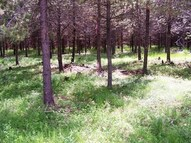 Mcginnis Meadows Road (Lot 3a) Libby MT, 59923