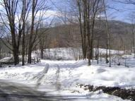 100 Acres Williams River Road Marlinton WV, 24954