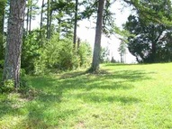 Lot 24 Golden Willow Court Easley SC, 29642