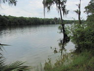 County Road 349 Old Town FL, 32680