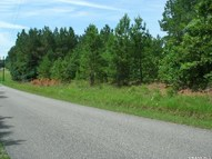 Tract 4 Cabo Rd Enville TN, 38332