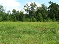 Lot 26 Weeping Willow Drive Easley SC, 29642