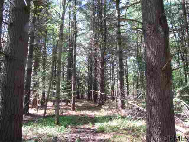 Lot 4 Dunham Pond Rd Greenfield Center NY, 12833