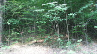 Porter Road Lot 37a Brownfield ME, 04010