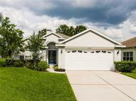 3428 Coconut Grove Road Land O Lakes FL, 34639