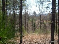 Lot 48 Deep Gap Farm Road East Mill Spring NC, 28756