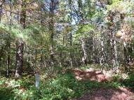 Lot 41  273rd St. Holcombe WI, 54745