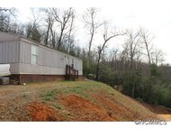 821 Turkey Pen Gap Road Brevard NC, 28712
