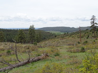 Tbd Beaver Creek Ranch Road Bayfield CO, 81122