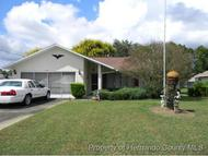 11451 Janet Ave Spring Hill FL, 34608