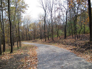 Lot 4 Thirty Foot Trail Rd. Oglesby IL, 61348