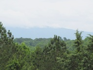 Tract A Riverbend Tr. (Auction) Charleston TN, 37310