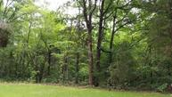 3 Caney Fork Rd - #3 Fairview TN, 37062
