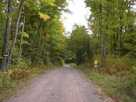 Lot 3 Co Rd 424 Crystal Falls MI, 49920