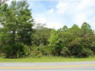 Royal Trails Road Eustis FL, 32736
