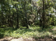 Lot 27 Saint Joseph'S Point Darien GA, 31305