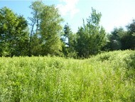 Lot 2 Birch Lane Monkton VT, 05469