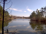 00 Lot 19b South Highlands Drive Poplarville MS, 39470