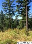 9 Acres Racoon Lane Orofino ID, 83544