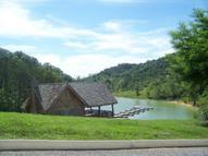 Lot 11 Stone Cove Way Dandridge TN, 37725